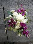 orchidea Dendrobium e rose bianche